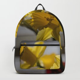 Daffodils in Red Crystal vase from my photography collection Backpack