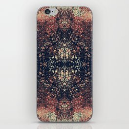 The Enchanted Forest No.11 iPhone Skin