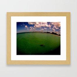 Dolphin off the Pier Framed Art Print