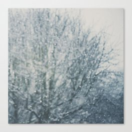 an abstract photograph of a tree & falling sn Canvas Print