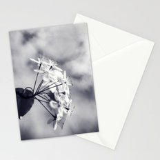 Blossoms in Black and White Stationery Cards