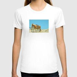 Beach Ponies T-shirt