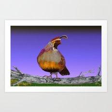 new mexico quail Art Print