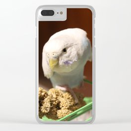 volo Clear iPhone Case