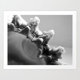 B&W Shell Edge Art Print