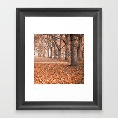 Autumn in Melbourne Framed Art Print