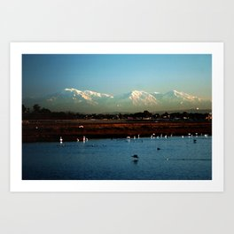 Bolsa Chica Wetlands Huntington Beach, California Art Print