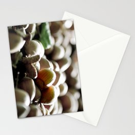Hazelnuts in the forest Stationery Cards