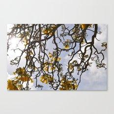 Yelow Canvas Print
