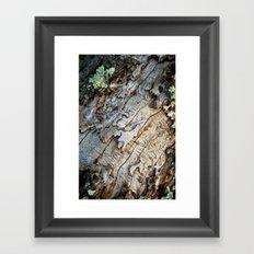 Eaten Wood Framed Art Print