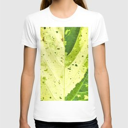 Leaf with abstract patterns 2 T-shirt