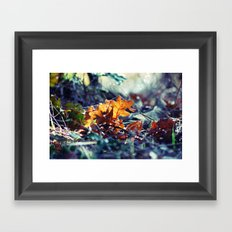 Blue Autumn Framed Art Print