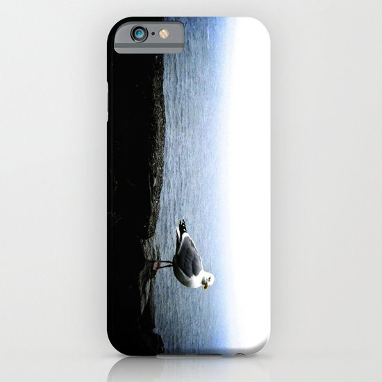 Perched & Pictured. iPhone & iPod Case