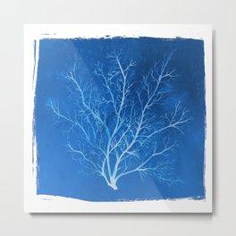 Watercolor Cyanotype Seafan Metal Print