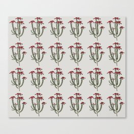 Ericaceae Canvas Print