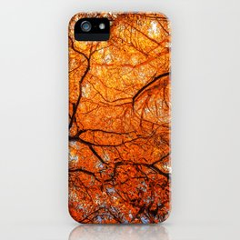 Sky Roots in Forest Red iPhone Case