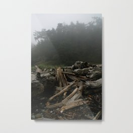 How Long Has It Been? Metal Print