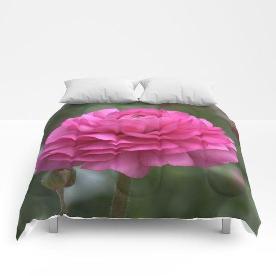Ranunculus Pink Comforters