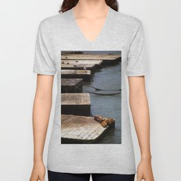 Sunbathing Seals Unisex V-Neck