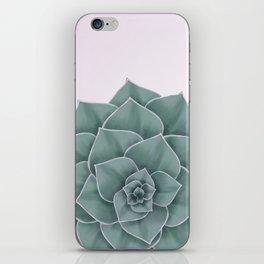 Big Green Echeveria Design iPhone Skin