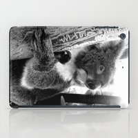 koala iPad Cases featuring Koala by Alan Hogan