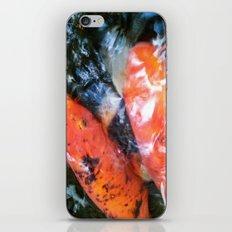 Koi Abstraction 001 iPhone & iPod Skin