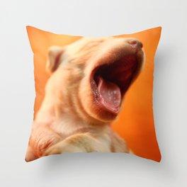 Labadorable No. 02 Throw Pillow
