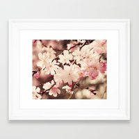 cherry blossom Framed Art Prints featuring Cherry Blossom by Erin Johnson