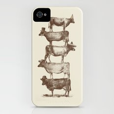 Cow Cow Nuts iPhone (4, 4s) Slim Case
