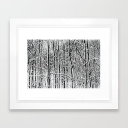 Winter gris Framed Art Print