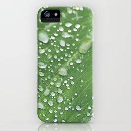 Misty Leaf iPhone Case