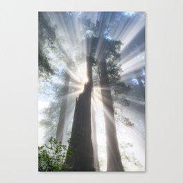California Beamin' Canvas Print