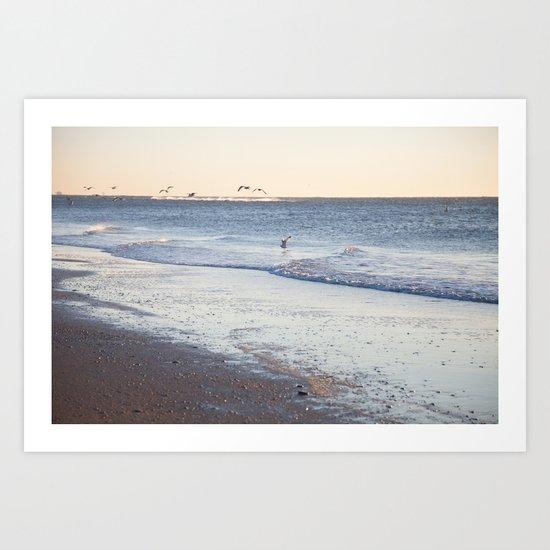 Birdy Beach  Art Print