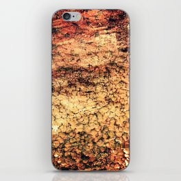 Pattern or nature iPhone Skin