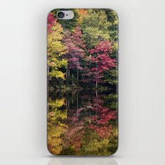 autumn reflections iPhone & iPod Skin