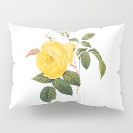 Vintage Yellow Rose [01] Pillow Sham