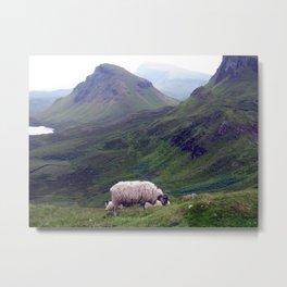 scottish sheeps, isle of skye. Metal Print