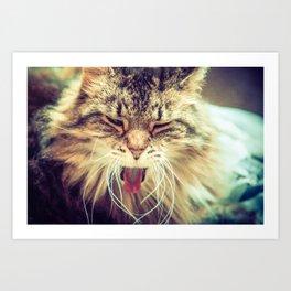 Yawning cat Art Print