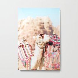 308. Camels colors, Petra, Jordanie Metal Print