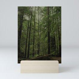 forest seesaw Mini Art Print