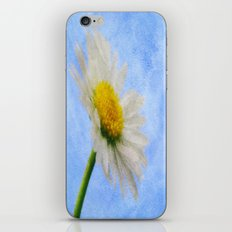 Daisy Texture 2 iPhone & iPod Skin