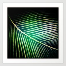Green Collection Art Print