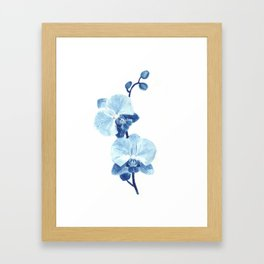 Orchid watercolor painting Framed Art Print