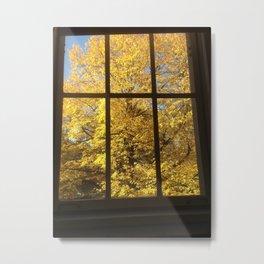 Yellow Leaves and Windowpanes Metal Print