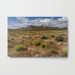 Painted_Desert 0211 - Southwest USA Metal Print