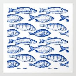 Dark Blue Fish Art Print