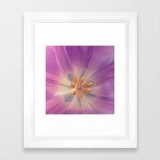 Purple Flower Framed Art Print