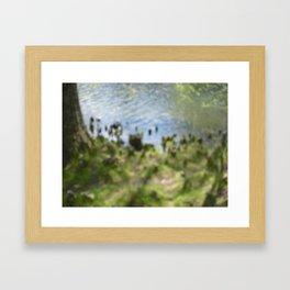 Knobs II Framed Art Print
