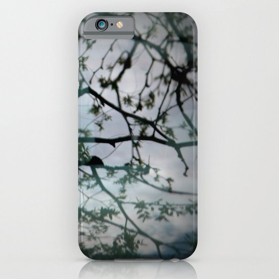 tree mystery iPhone & iPod Case