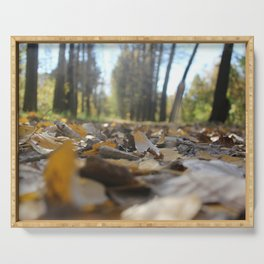 Landscape autumn in the future.Came up with an interesting angle as if in a fairy tale the sun shine Serving Tray